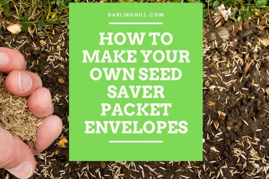 seed saver printable envelopes