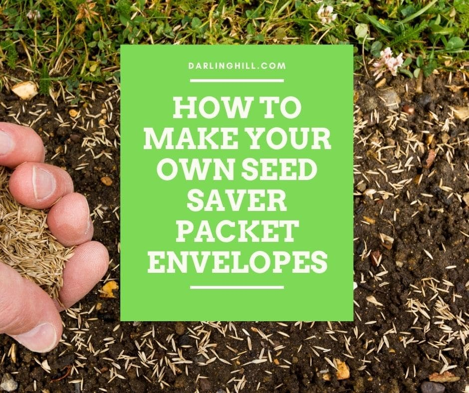 how to make seed saver packet envelopes printable